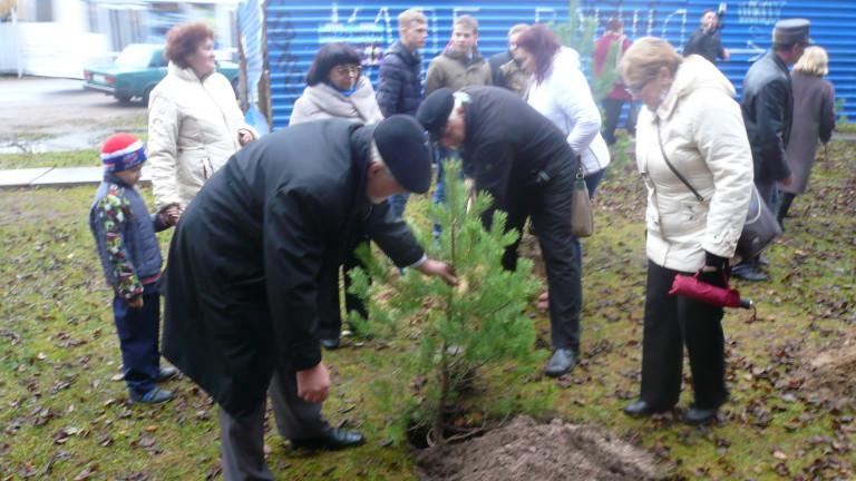 Акция Посади дерево,продолжи традицию